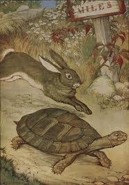 TortoiseHareimages (1)